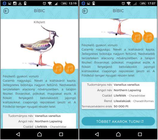 Így fest a madarak adatlapja
