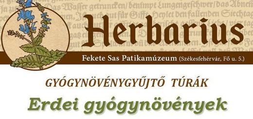 Herbarius_cl