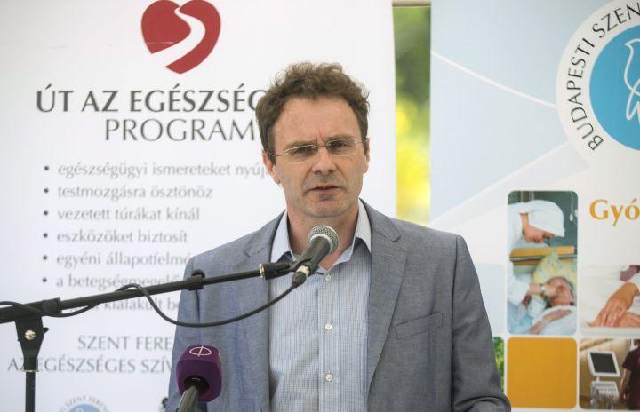 Toldy-Schedel Emil, a kórház főigazgatója