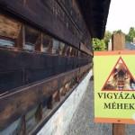 meheszhaz_4