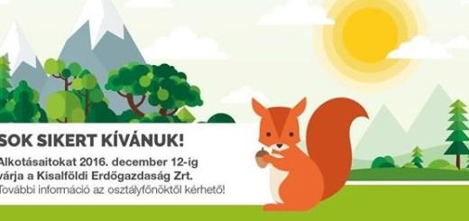 alkotoi_palyazat_kaegclcl