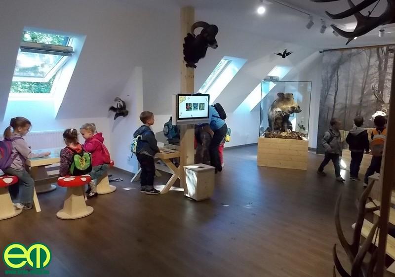 Kőhalmy Vadászati Múzeum a Soproni Parkerdőben