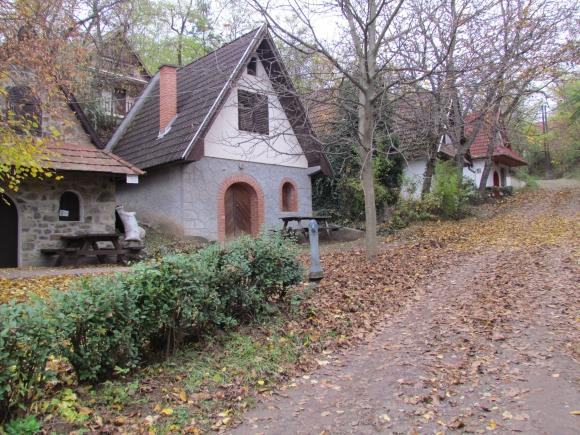 A régi pincesor, ahonnan az új tanösvény indul (Fotó: Mentusz Károly)