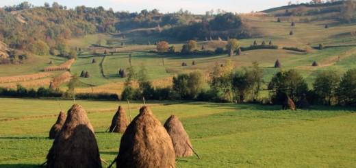Erdélyi tájakon (Fotó: Gribek Tímea)