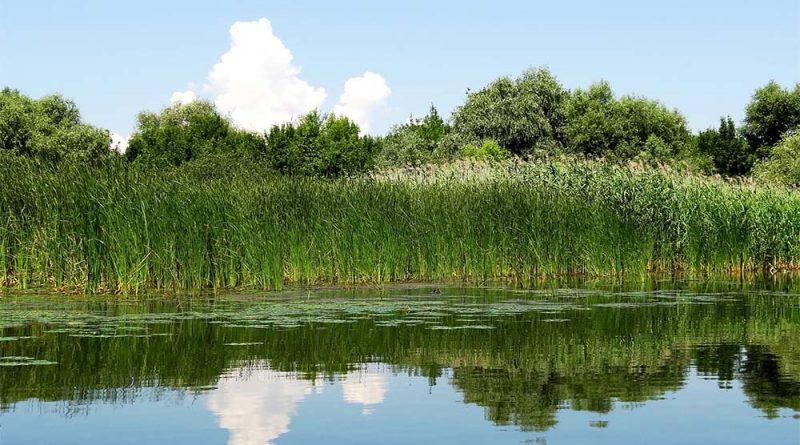 9bab98c8a9 ... a Felső-Tisza-vidék vízi turizmusának és a tiszadobi Andrássy-kastély, a  komlódtótfalui Becsky-Kossuth-kúria turisztikai fejlesztése, a ...